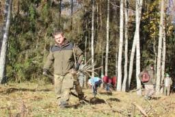 Специалисты центрального аппарата КГК осуществили уборку леса вблизи мемориального комплекса «Хатынь» и возложили цветы к Вечному огню