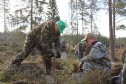 Работники Комитета госконтроля на республиканском субботнике трудились на посадке леса и благоустройстве территорий