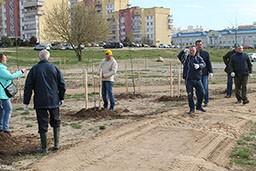 Работники Комитета государственного контроля Гродненской области приняли участие в республиканском субботнике.