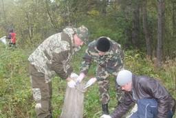 Во всех регионах Беларуси прошла добровольная акция по уборке лесного фонда от мусора и захламленности.