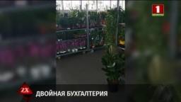 Почти 3,5 млн. рублей налогов недоплатила в бюджет фирма по оптовой торговле цветами (телеканал «Беларусь 1», программа «Зона Х», 18-30)