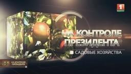 Садовые хозяйства (телеканал «Беларусь-1», программа «На контроле Президента»)