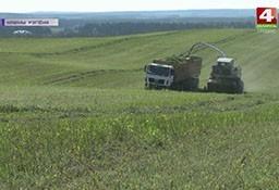 Сельхозпредприятия в поле зрения госконтроля (телеканал «Беларусь-4», программа «Новости региона»).