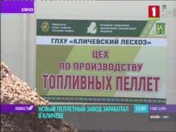 """В Кличеве заработал новый пеллетный завод. (телеканал Беларусь 1, программа """"Новости"""" - 9:00)"""