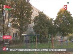 """В Беларуси растет спрос на арендное жилье. (телеканал СТВ, программа """"24 часа"""" - 19:30)"""