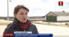 Гибель более сотни голов крупнорогатого скота пытался скрыть руководитель агропредприятия в Любанском районе